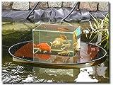 Flying-Aquarium-Oval©'Hover' 2500 umbra Beobachtungsbecken für Teichfische Teichbedarf Gartenteich Koi