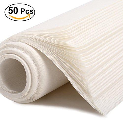 Les 50 feuilles de papier de riz