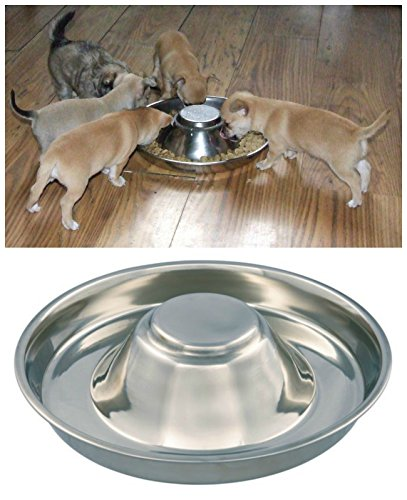 Kabalo Stainless Steel Puppy,Cat, Dog, Pet, Litter Food Feeding & Weaning Feeder Bowl by Kabalo