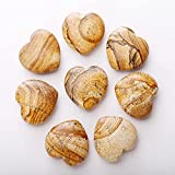 Z-DJJ Fengshui Piedras Decorativas, Piedras Preciosas en Forma de corazón para Manualidades, Accesorios de decoración, Actividades, fabricación de Joyas, guijarros Decorativos para acuarios,30pcs