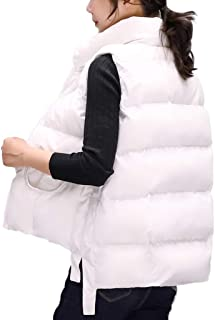 Womens Vest Zip Up Stand Collar Sleeveless Lightweight Quilted Padded Casual Jackets Autumn and Winter Outerwear with Pockets (Color : White, Size : XXL)