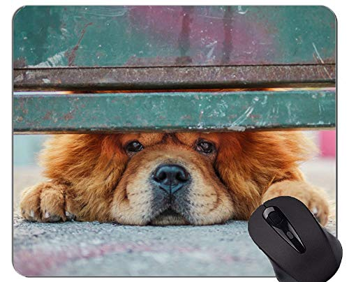 Preisvergleich Produktbild Mousemat-Mausunterlagen,  Chow-Chow-Hund