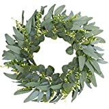 Green Eucalyptus Wreath,18' Artificial Eucalyptus Leaves Wreath with Wisps of Tender Leaves,Spring/Summer Greenery Wreath for Front Door Wall Window Decor