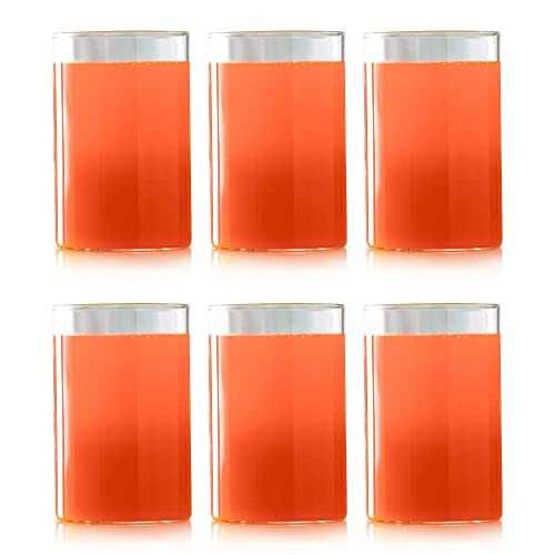 Borosil Vision Glass Set, 295ml, Set of 6, Transparent