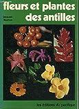 Fleurs et plantes des Antilles