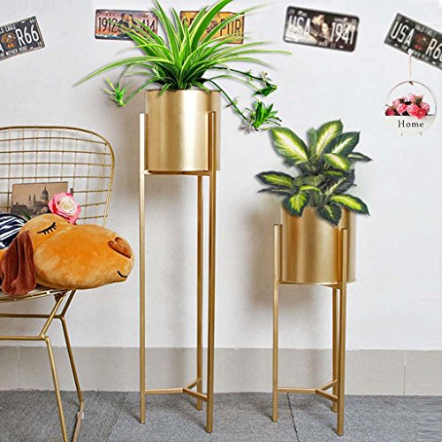 LYQZ Nordic Eisen Blume Ständer Moderne Boden-Stil Goldenen Wohnzimmer Dekoration Blume Rack Haus Pflanze Blumentopf Rahmen Balkon Display Regal (größe : 22 * 22 * 90cm) - 2