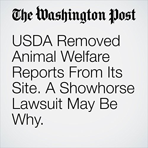 USDA Removed Animal Welfare Reports From Its Site. A Showhorse Lawsuit May Be Why. audiobook cover art