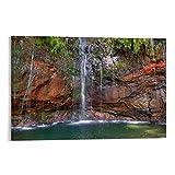 xizhuang Madeira Poster, dekoratives Gemälde, Leinwand,