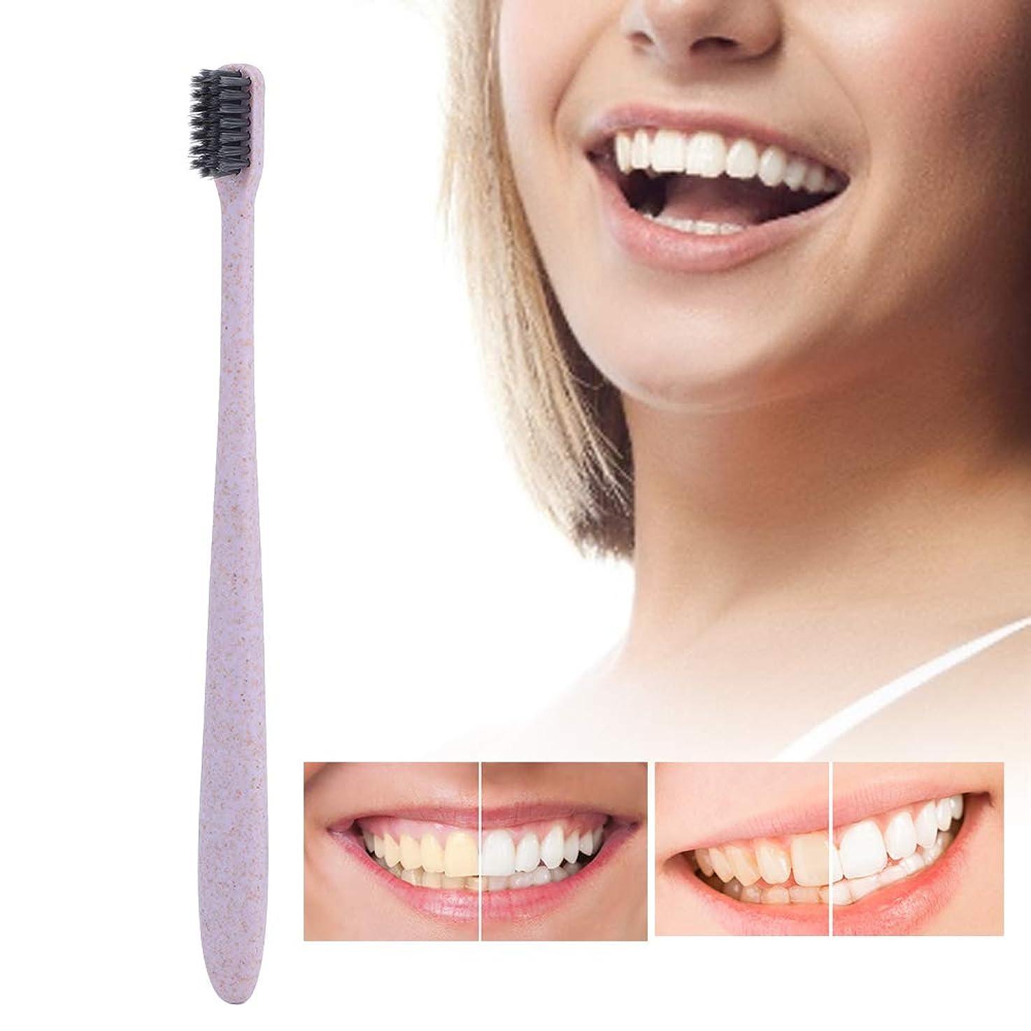 光格納トラクター10ピース歯ブラシ、柔らかい竹炭ブラシ髪小麦ハンドル歯ブラシ大人の口腔ケア歯ブラシ
