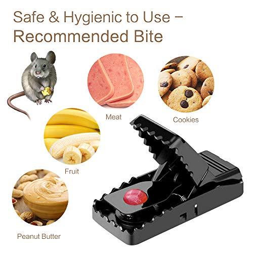 Trampa para Ratones Control de Roedores, Juego de 6 Ratonera de Plástico para Interiores y Exteriores, Trampa para Ratas Efectiva Fácil de Instalar de Hogar y Oficina