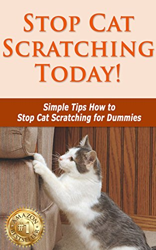 Stop Cat Scratching Today! (English Edition)