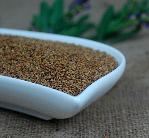 Naturix24 – AlfaAlfa-Samen, Luzernesamen ganz – 1 Kg Beutel
