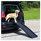 Amazon.es: Escalera para perro