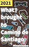 What I brought to Camino de Santiago: Secret for my 7kg or 14lb backpack (English Edition)