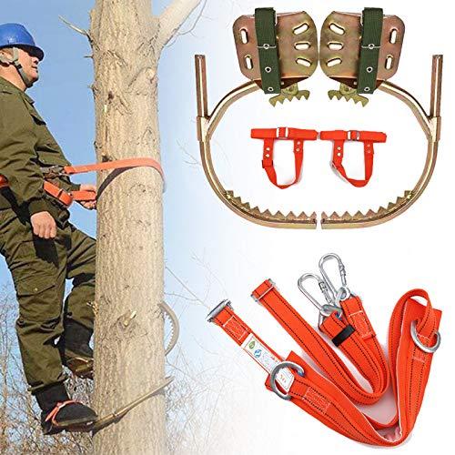 Steigeisen für Bäume, Klettern Bäume Artefakt, rutschfest Baum Kletterausrüstung Set mit Sicherem Gürtel Zum Klettern Jagdbeobachtung Obst Pflücken,300model