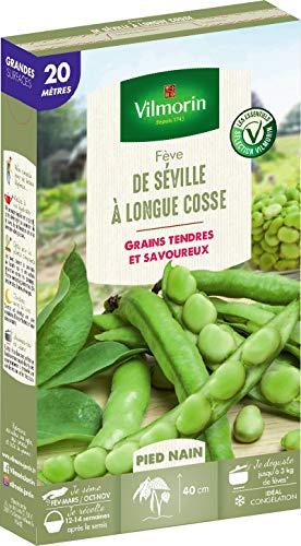 Vilmorin Fève de Séville a Longue cosse Boite série20m, Vert