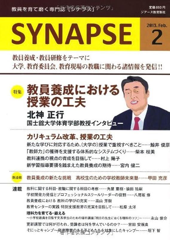 世論調査導入する開示するSYNAPSE [シナプス] 2月号通巻18号
