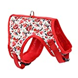 Mile High Life | Easy Step in Air Mesh Vest Harness | Spring Floral Collection | Adjustable Easy Closures Both Neck and Chest |20 lbs Small Dogs & Cats | Red Rose | M Chest Size (18'-20')