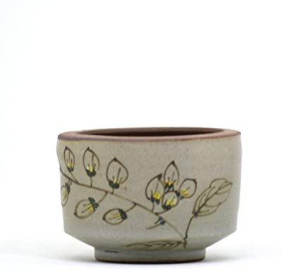 myBageecha - A Feather Imprint Handpainted Ceramic Flower Pot Succulent Gifting