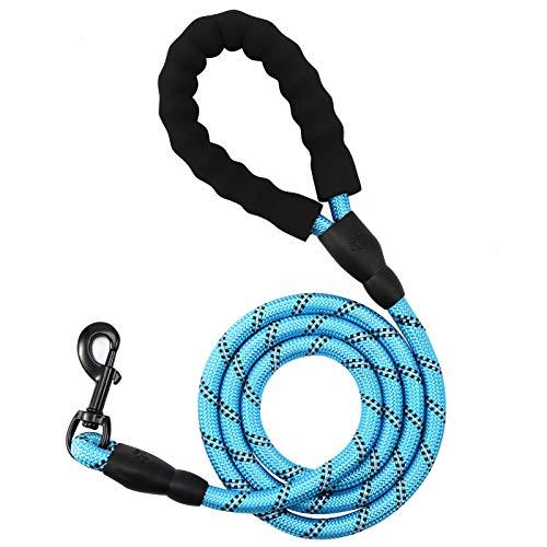 RosewineC 1,5m Profi Hundeleine Bequemen gepolstertem Griff und hochreflektierenden Fäden der Trainingsleine für Sicherheit Nachts eignet für Alle Größe Hunde(Blau)