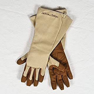 Jackson & Perkins Jackson & Perkins Rose Gloves - Large - Sizes 8 1/2 and Over