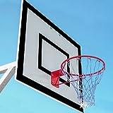 FORZA Cesta de Baloncesto │ Aro de Baloncesto │ Material de Basket (Solo ARO)