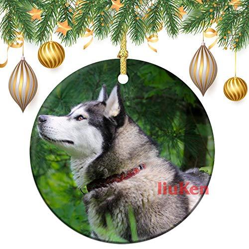 happygoluck1y Keramik-Weihnachtsschmuck, Husky-Hund, Ornamente, rund, doppelseitig, Weihnachtsbaumschmuck, Ornamente, Andenken, für Zuhause, Kinder, neue Paare, 7,6 cm