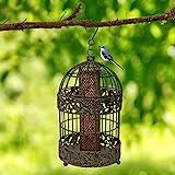 13 in. Caged Bird Feeder for Small Songbirds, Tall Rustic Metal Hanging Bird Feeder for Garden, Mesh...