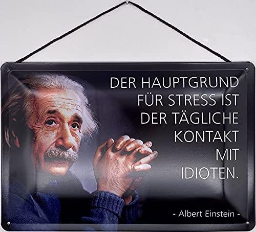 Blechschild mit Kordel 30 x 20 cm Albert Einstein: Der Hauptgr& für Stress ist der tägliche Kontakt mit Idioten. - Blechemma