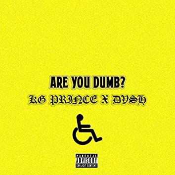 Are You Dumb? (feat. Dvsh)