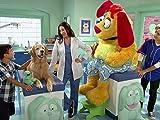 Veterinary Loves Company
