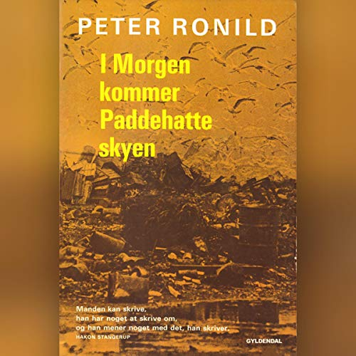 I morgen kommer paddehatteskyen audiobook cover art