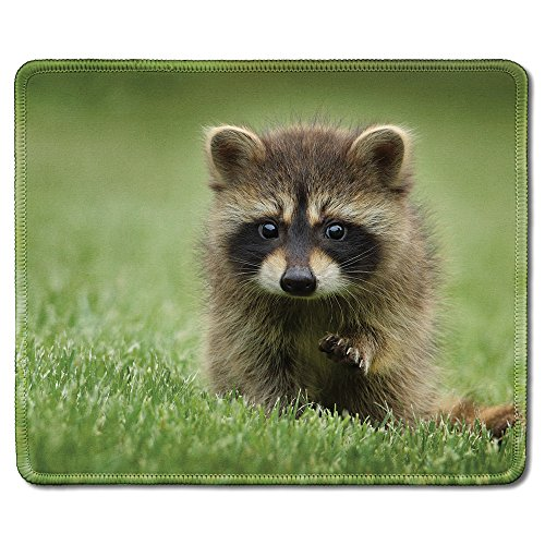 dealzEpic - Animal Art Mousepad - Natural Rubber Mouse Pad Printed with Cute Fluffy Little Raccoon in The Wild - Stitched Edges - 9.5x7.9 inches