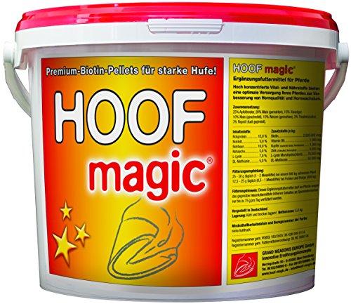 Biotina per cavalli con zinco rame Vitamina B6 e più - Stimola la crescita HUF e Corno...