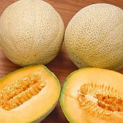 25 semillas de corazones de oro melón (Cucumis melo) Planta Fruta Melón