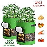 CAVEEN Pflanzen Taschen 2 teilig, Kartoffel Möhren Pflanzsack Pflanzbeutel 10 Gallonen mit Griffen und Sichtfenster Klettverschluss Atmungsaktiv Beutel Gemüse Grow Bag Pflanztasche, Grün