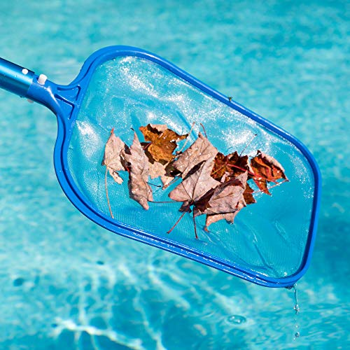 SharkBlu Pool Skimmer Net - Small Fine Mesh Plastic Leaf Skimmer for Swimming Pool and Spa Supplies - Pole Not Included