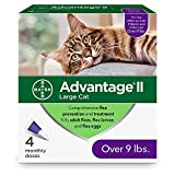 Bayer Advantage II Flea Control Treatment