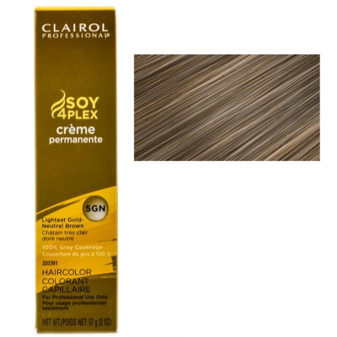 心理的欠乏保護するClairol プロフェッショナル永久5GN最軽量ゴールドニュートラルブラウン