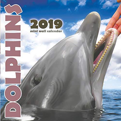 Dolphins 2019 Mini Wall Calendar