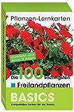 Pflanzen-Lernkarten: Die 100 wichtigsten Freilandpflanzen: 100 Lernkarten mit Lernkartenbox - Karl-Michael Haake
