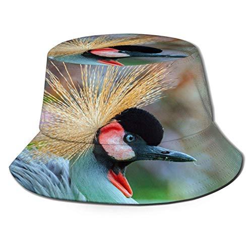 Sombrero de Cubo de pájaro Animal de grulla de Corona roja Gorra de Verano Unisex al Aire Libre Sombreros de Sol Plegables para Senderismo Deportes de Playa