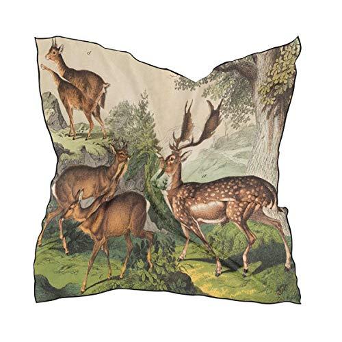 Ahomy - Bufanda cuadrada para mujer, diseño de ciervo al atardecer (60 x 60 cm)