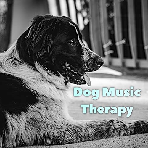 Dog Music Therapy, Relaxmydog & Dog Music Dreams