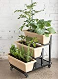 Superior Trading Co. STC-1891 Three Tier Urban Garden Planter Bed Raised Planter, Black,...