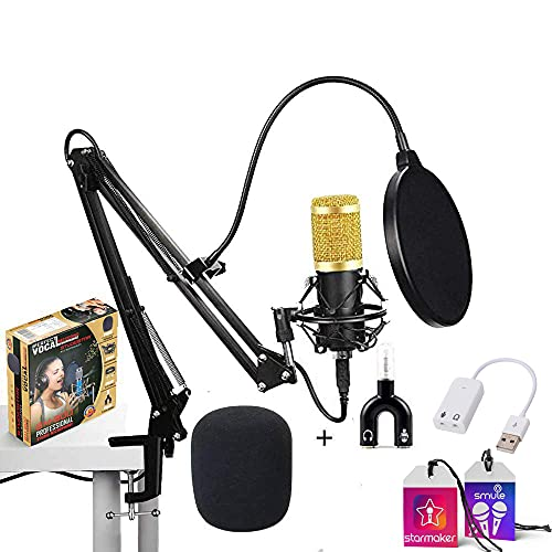 Studiostar BM 800 Condenser Microphone for Professional Studio Recording Microphone with Shock Mount (Complete Set)