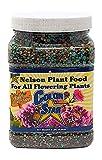 Nelson Plant Food For All Flowering Plants Annuals Perennials Bulbs Shrubs Indoor Outdoor Granular Fertilizer Color Star 19-13-6 (2 lb)