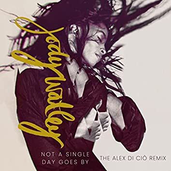 Not a Single Day Goes By (Radio Edit)