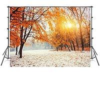 8x8 ft日没の赤いカエデの葉の雪の写真の背景の背景