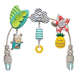 Toys with stimulatory senses